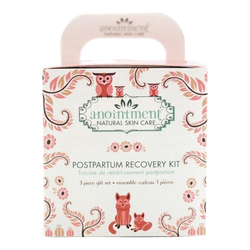 Anointment Postpartum Recovery Kit, 1 sets