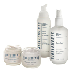 Bioelements Great Skin in a Box - Combination Skin, 1 sets