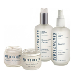 Bioelements Great Skin in a Box - Oily Complexion, 1 sets