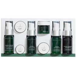 Dr Alkaitis Organic Skin Food Travel Kit, 1 sets