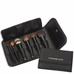 Youngblood Professional Mini Brush Kit, 6 pieces