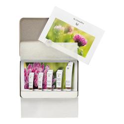 Dr Hauschka Regenerating Skin Care Kit, 1 sets