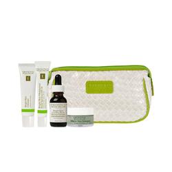 Eminence Organics Bright Skin VitaSkin Starter Set, 1 set