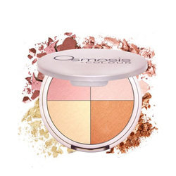 Osmosis MD Professional Highlighting Quad, 9.6g/0.3 oz